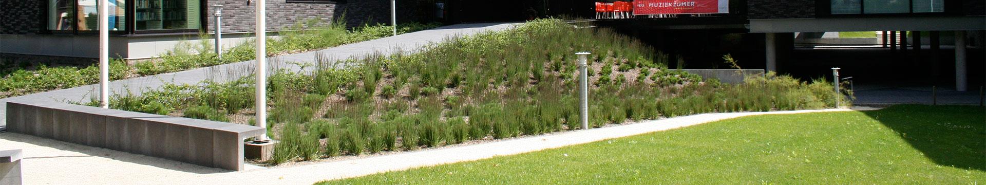 residence-garden-tuinonderhoud-veluvine-nunspeet-header