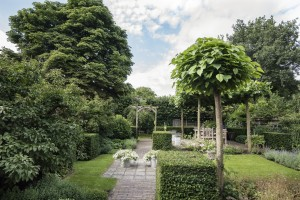 budget tuinen onderhoud