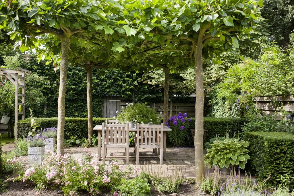 Budget tuinen van wijngaarden is de specialist for Huis in tuin voor ouders
